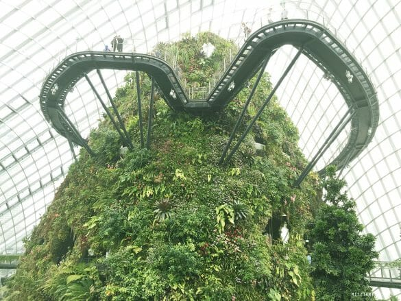Cloud Forest og Gardens by the Bay, Singapore