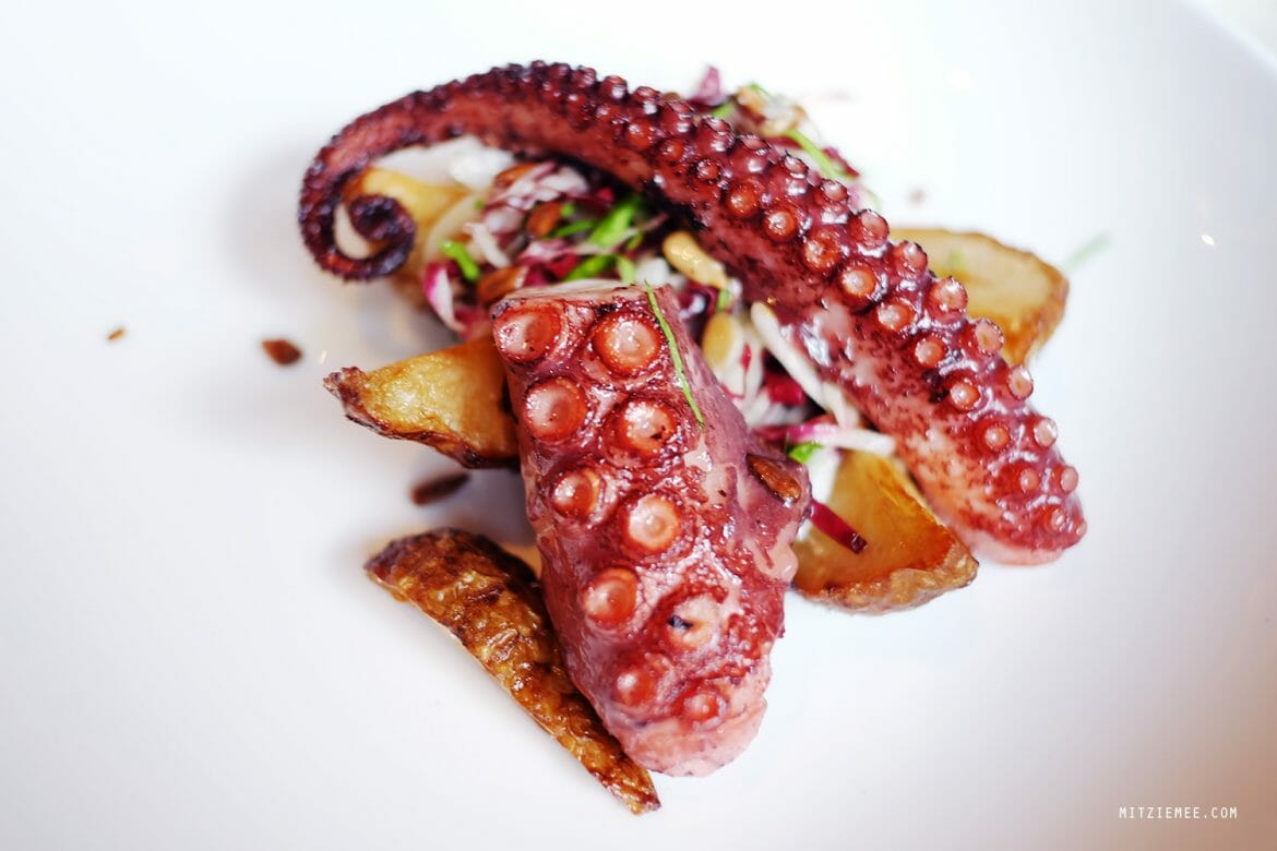 Octopus at Faun, Brooklyn, New York