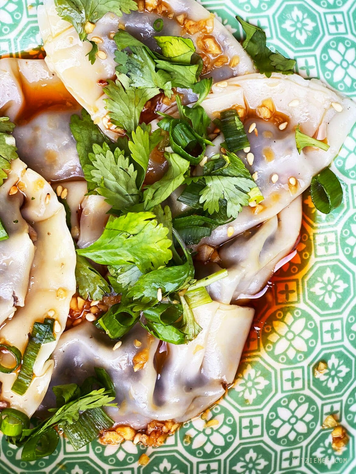 Dumplings in spisy sauce, Recipe